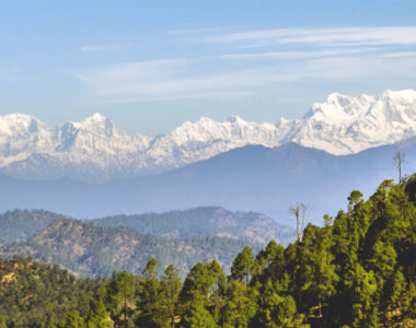 binsar wildlife sanctuary